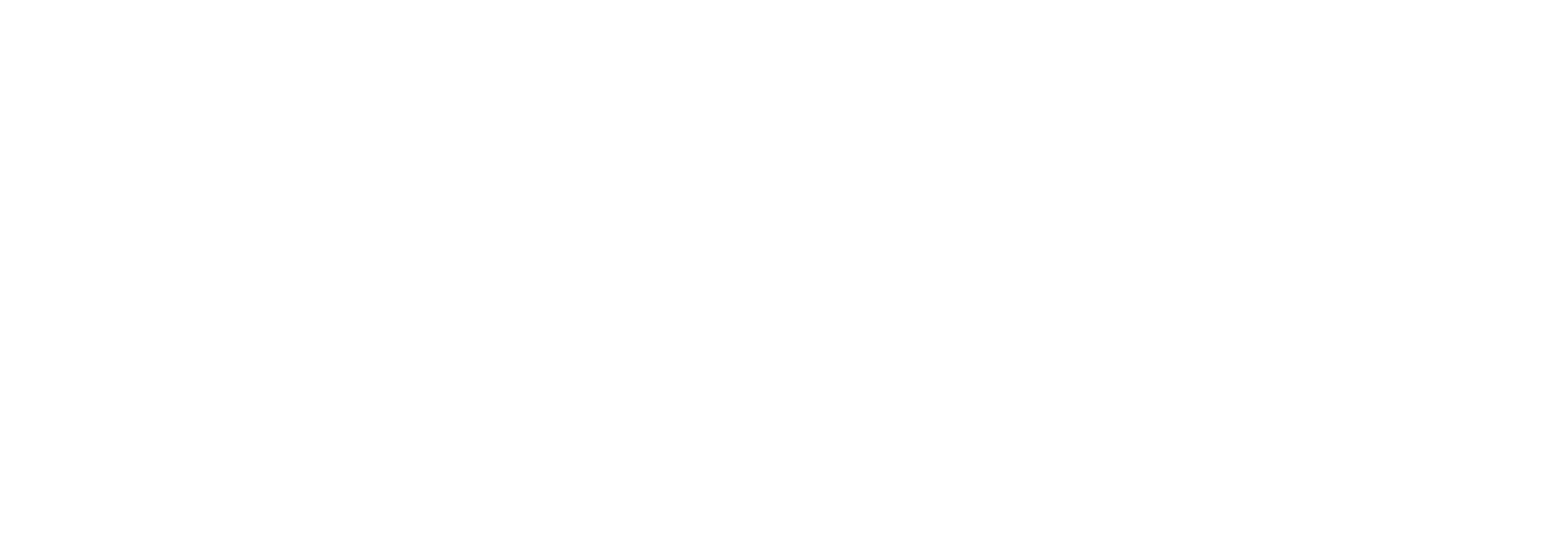 fitsteps for life